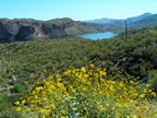 Spring Training Optional Day Trip - Apache Trail