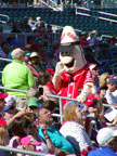 Goodyear Baseball Park Spring Training Mascot