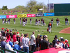 Spring Training Following San Francisco in Tempe Diablo Stadium
