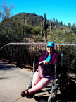 Spring Training Sightseeing at Phoenix Desert Botanical Garden 1