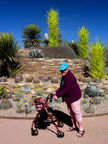Spring Training Sightseeing at Phoenix Desert Botanical Garden 2
