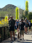 Spring Training Sightseeing at Phoenix Desert Botanical Garden 3