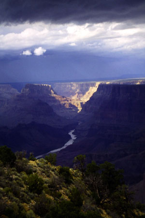 Palisades of the Desert Sunlit from Desert View at Grand Canyon
