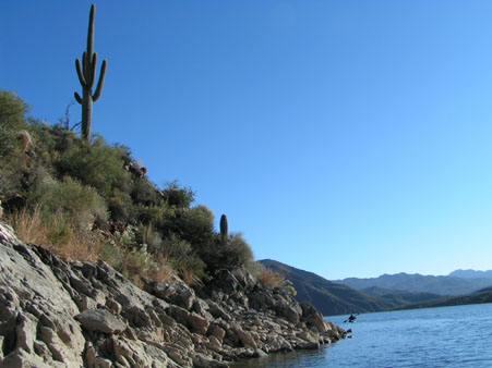 Saguaro cactus and kayakers in the Superstition Mountians