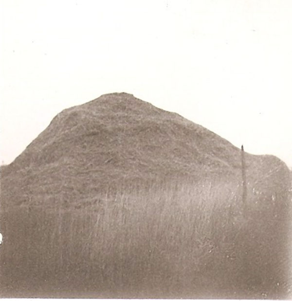 Unknown Hill